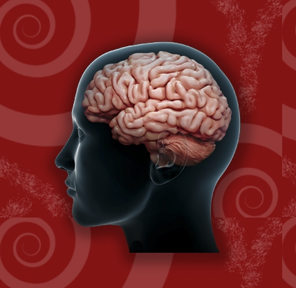 tramatic brian injury Brain damage is an injury that causes the destruction or deterioration of brain cells in the us, every year, about 26 million people have some type of brain injury -- whether as a result of.